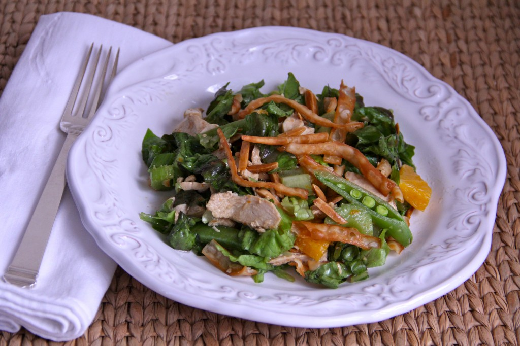 Asian Chicken Salad with Crispy Won Tons